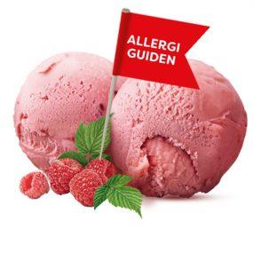 Allergiguiden